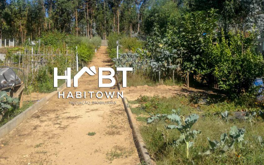 Terreno para construção, em zona calma Arredores de Águeda
